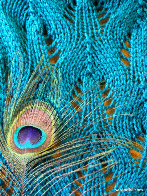 Peacock Plumage Scarf Knit Pattern | sarahdivi.com